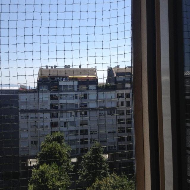 Filet vert renforcé pour fenêtre - Charmilles
