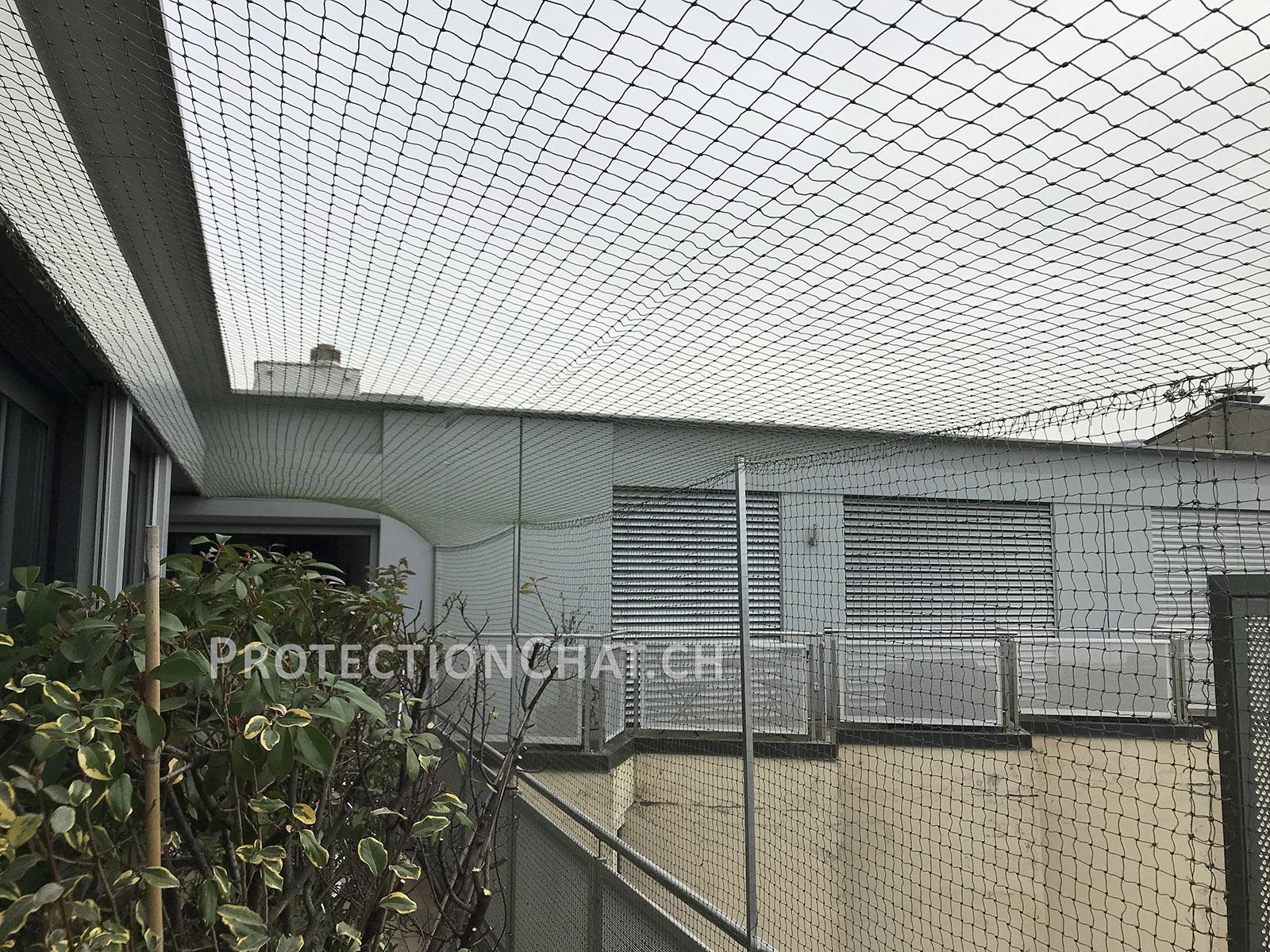 Protection-Chat-Terrasse-avec-couverture-04