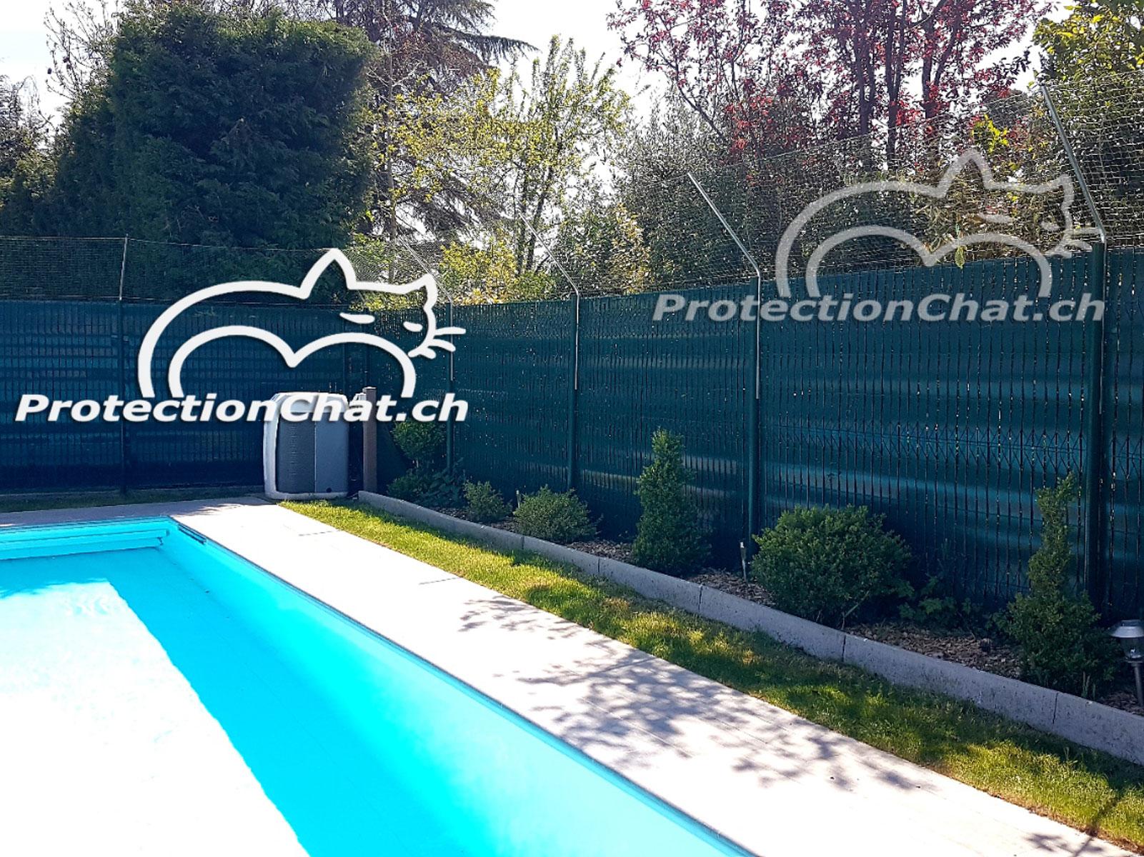 Protection-Chat-rehaussement-de-cloture-01