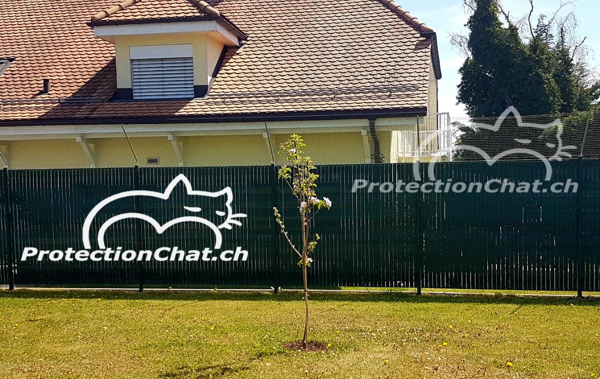 Protection-Chat-rehaussement-de-cloture-02