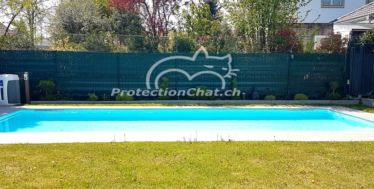 Protection-Chat-rehaussement-de-cloture-03