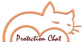 Protection Chat